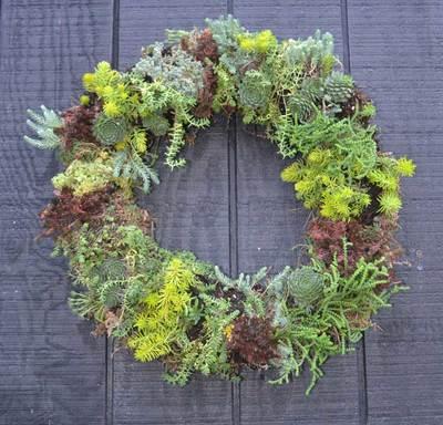 Sat Jul 10 2021 Succulent Wreath